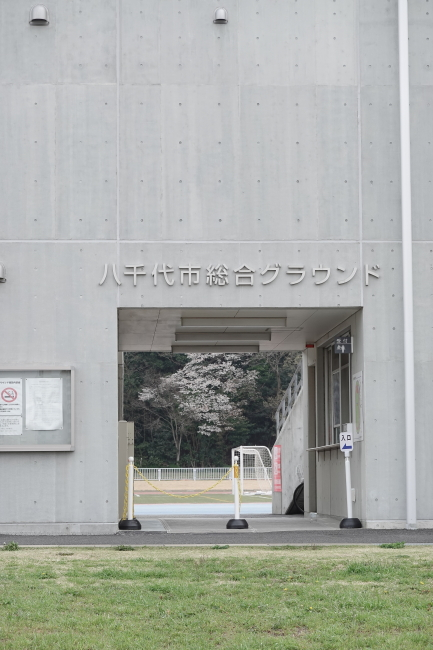 DSC01467+1.JPG