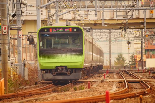 DSC01960+1.JPG