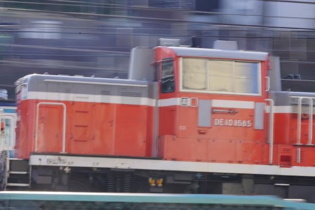 DSC03011-1+.JPG