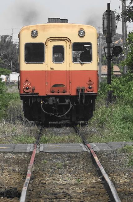 DSC03498 (2).JPG