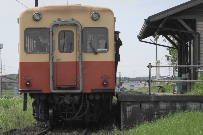 DSC03520 (1).JPG
