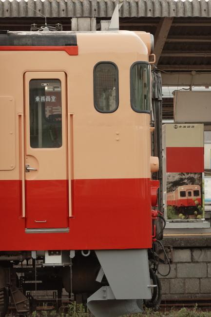 DSC03805 (1).JPG