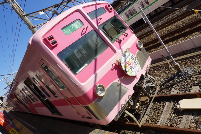 DSC05131.JPG