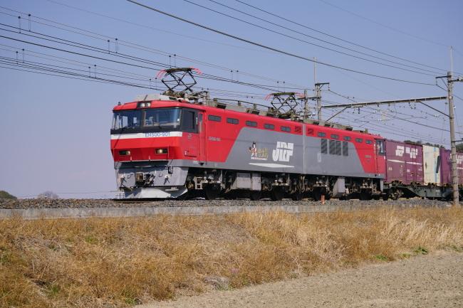 DSC06405-1.JPG