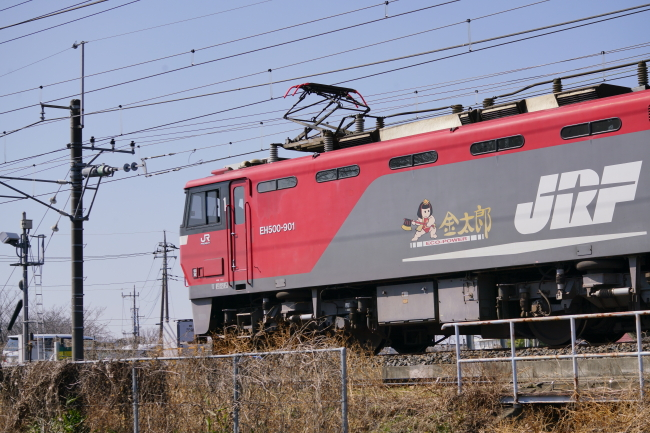 DSC06449-1.JPG
