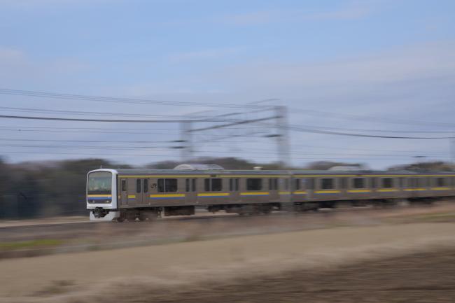 DSC08135+1.JPG