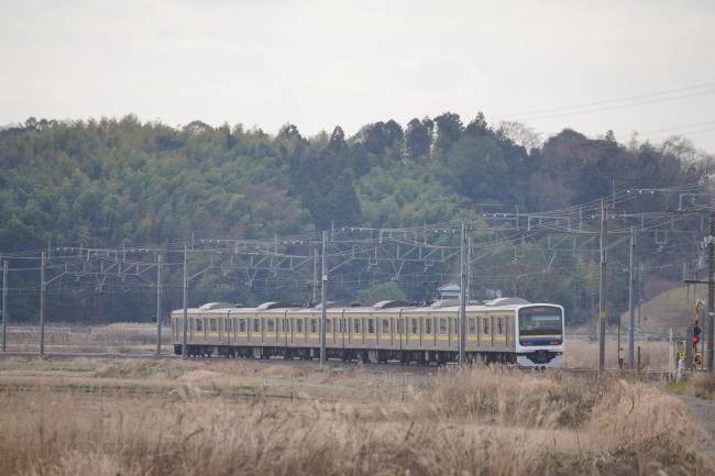 DSC08401+1.JPG